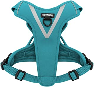 Maverick Dual Attachment Outdoor Dog Harness by Voyager | NO-Pull Pet Walking Vest Harness - Turquoise, Large
