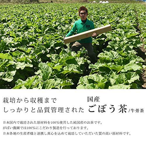 がばい農園『国産手作りごぼう茶2g×50包』