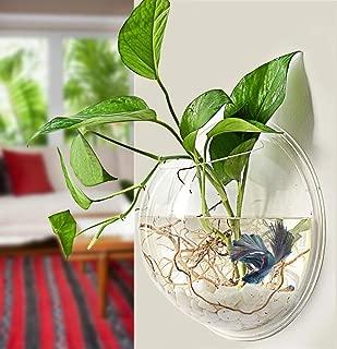 Hylotele Home Decoration Wall Mount Fish Tanks Goldfish Bowl Acrylic Hanging Aquariums Flowerpot Flower Vase