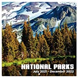 2021-2022 Calendar - Monthly Wall Calendar Square with Thick Paper, July 2021 - December 2022, 12' x 24' (Open), Unruled Blocks