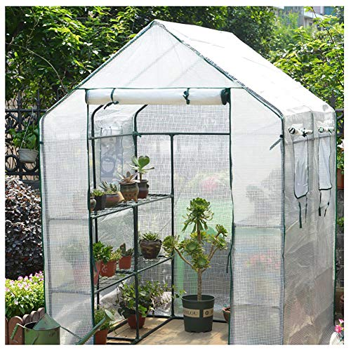 HZW Walk-in Plant Greenhouse with PE Cover and Windows, Indoor Outdoor Plant Gardening Greenhouse Canopy 3 Tier Plant Flower Shelf, Easy to Assemble 143x143x195cm/56.3x56.3x76.8 inch,White