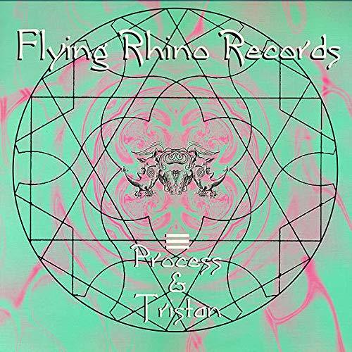 Process & Tristan - KV 23 / Random Factor - Flying Rhino Records - AFR 015