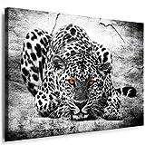 Bild auf Leinwand Raubkatzen - Panther - Leopard - Panther
