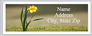 150 Personalized Return Address Labels Primitive Country Flowers Daffodil (bx 992)