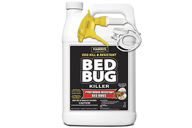 Bed Bugs Best Spray