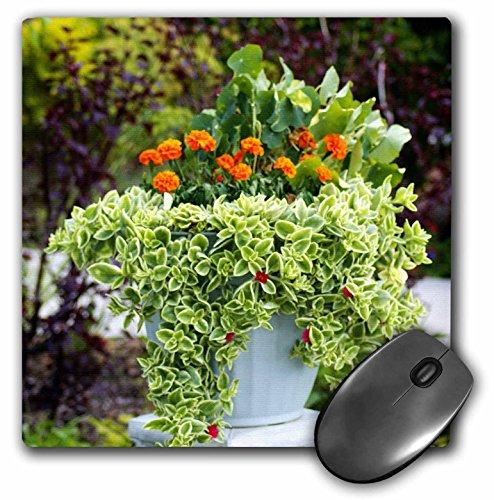 Florene Bloemen - Mooie Urn Met Oranje Bloemen n Groene Plant - MousePad (mp_45038_1)