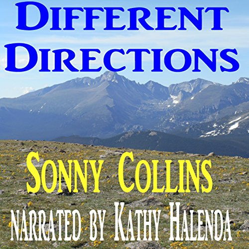 Different Directions audiobook cover art