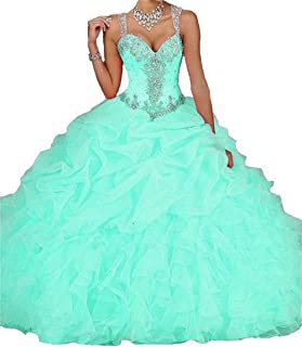 Women's Quinceanera Dresses 2019 Ball Gown Sweet 16 Prom Dress Plus Size D18
