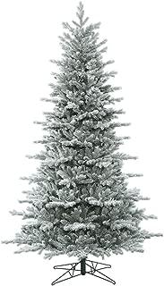 Vickerman Frosted Eastern Frasier Fir Christmas Tree