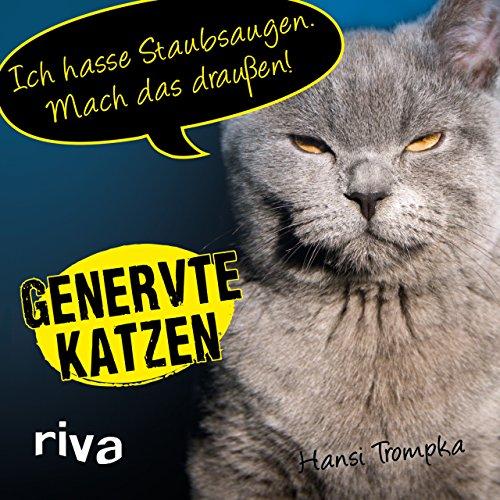 Genervte Katzen: Ich hasse Staubsaugen. Mach das draußen!