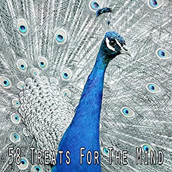 58 Treats for the Mind