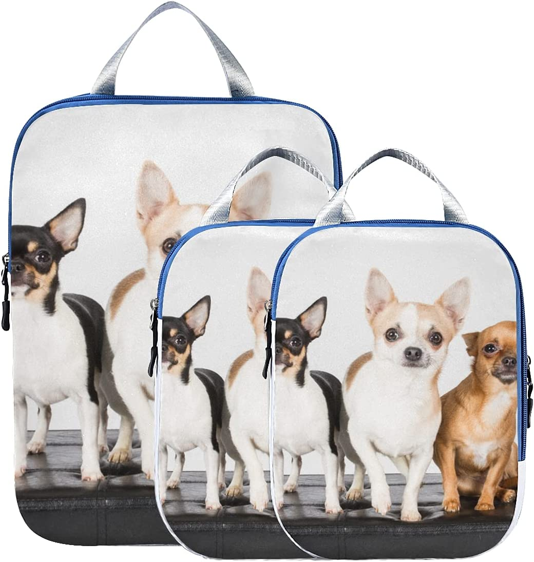 Compression Travel Cubes Ranking TOP8 Cheap Cute Small Dog Puppy Chihuahua Organize