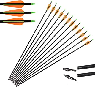 """Huntingdoor 31"""" Archery Fiberglass Target Practice Arrows with Screw-in Tips for Recurve or Compound Bow(Pack of 12)"""