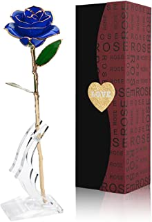 NICEAO 24K Gold Foil Trim Blue Rose Flower Long Stem with Transparent Stand, Best Gift for Valentines Day, Mothers Day, Anniversary, Wedding, Birthday Gift, Treating Yourself (Blue)