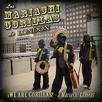 We Are Gorillas! (A Mariachi Lament)