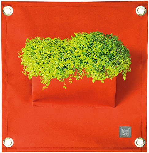 The Green Poche Le Amma1 40 x 50 cm. cm. Orange