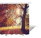 Yeuss Landscape Duschvorhang, Buche im Laub mit Sonnenstrahlen & Langen Zweigen Idyllische Kunst,Stoff-Badezimmer-Dekorset mit Haken,Orange-Braun