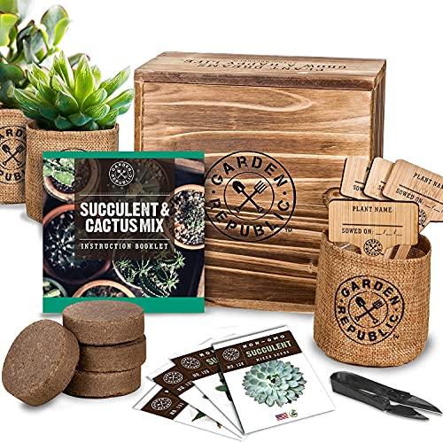 Cactus Succulent Seed Starter Kit – Indoor Garden Grow Kits, Seeds for Planting Mini Cactus Succulent Plants, Plant Markers, Soil, Pots, Wood Box – Gardening Gifts, Terrarium, Cacti Succulents Decor