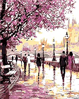 Morgofun DIY Painting Paint by Numbers Cherry Blossoms Park Drawing with Brushes Paint for Adults Beginner Level 40x50cm