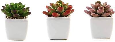 BalsaCircle 3 pcs 3-Inch Assorted Artificial Faux Small Echeveria Succulent Plants with Pots - Wedding Home Decorations Supplies Supplies