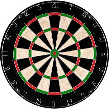 TG Champion Tournament Multi-color Bristle Dartboard