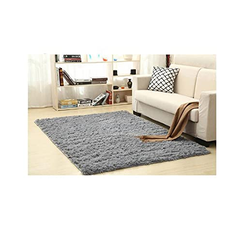 60 90 Cm Soft Fluffy Rugs Anti Skid Shaggy Area Rug Dining: Fluffy Rugs For Living Room: Amazon.co.uk