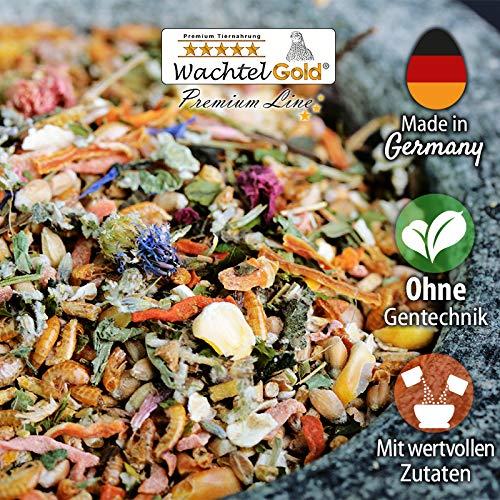 WachtelGold Wachtel Spezial Original Futter 30kg (3x10kg)-reich an Kräutern, Sämereien und Blüten