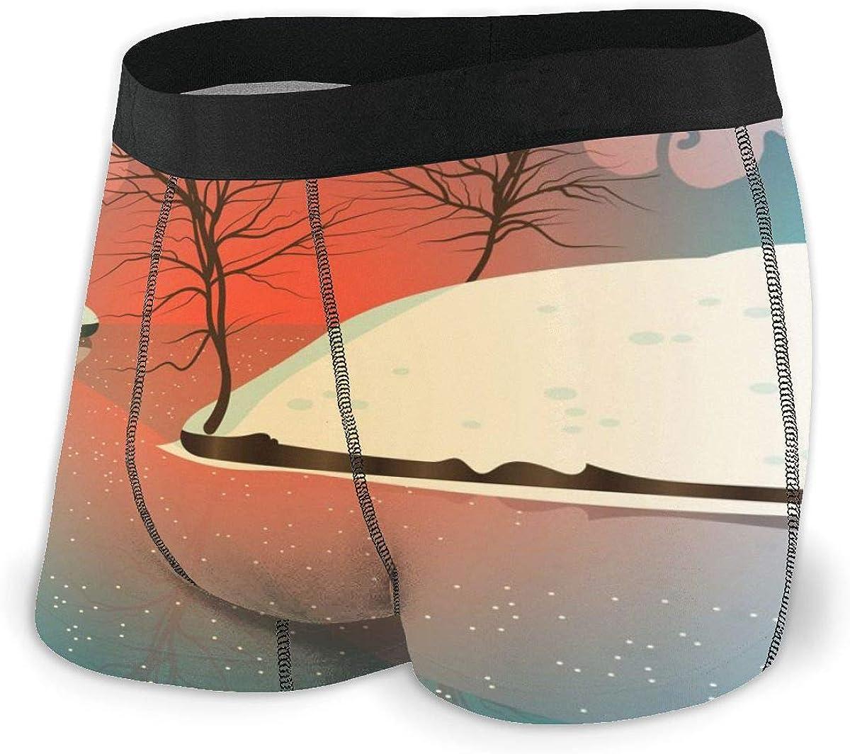 Randolph Wordsworth Mens Boxer Briefs Marvellous Winter Landscape Scenery Boys Trunks Underwear Short Leg Breathable Man