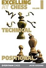 Excelling at Chess: Technical and Positional (Volume 1)