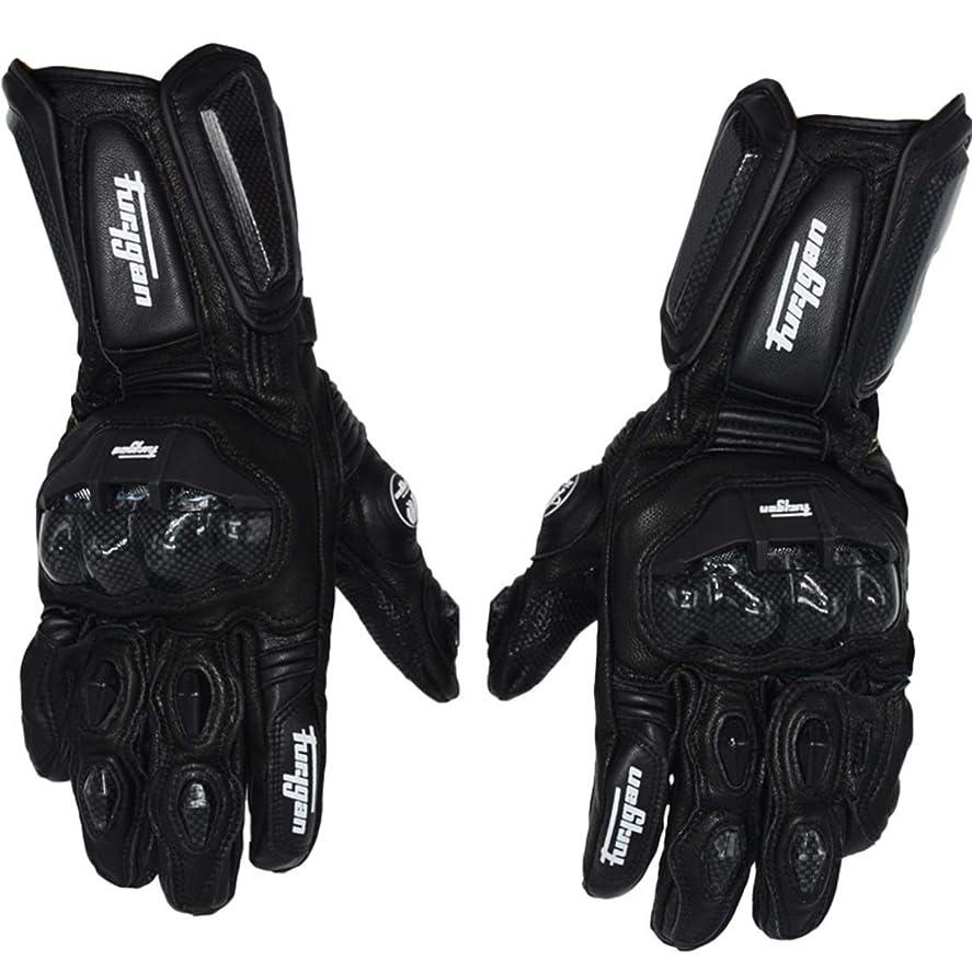 許可歩く高音Keriya Sende 防水オートバイの冬の手袋カーボン繊維の暖かい乗馬用手袋 (色 : 黒, サイズ : L)