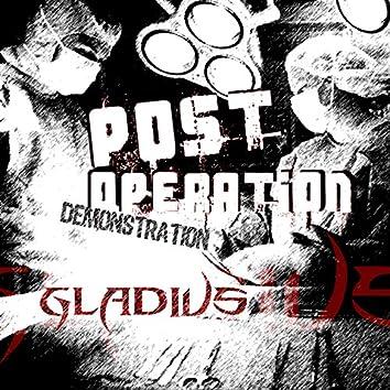 Post Operation Demonstration
