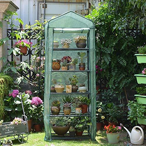 ZCCWS Grand Jardin Promenade dans la Serre de légumes de Tomate en Plein air élèvent Green House Shade Compact Cadre en métal PE Couverture en Plastique Plante Fleurs