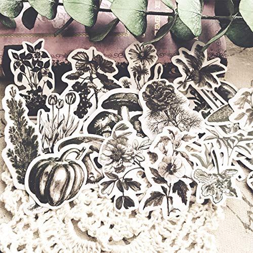 LSPLSP Vintage Retro mano cuenta material blanco y negro planta mapa Tn ácido sulfúrico etiqueta engomada planta 24 piezas