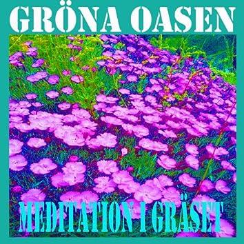 Meditation i Gräset