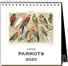 Parrots 2020 Calendar