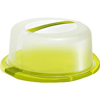 Rotho Cool & Fresh Campana per torte con raffreddamento, cappuccio e maniglia per il trasporto, Plastica PP senza BPA, Verde/Transparente, 38.0 x 34.0 x 16.0 cm