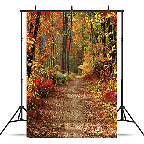 WOLADA 5x7FT Autumn Natural Landscape Photo Backdrop Forest Trail Backdrop Red Maple Leaf Deciduous Forest Backdrop Outdoor Party Backdrop Home Decoration Backdrop Photography Studio Props 11110