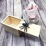 dé DE Spider Prank Scare Box,Wooden Surprise Box,Handmade Fun Practical Surprise Joke Boxes