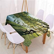 VICWOWONE Nature Lightweight Rectangle Tablecloth Suitable for Camping Wooden Chair at Serene Lake,Rectangle - W40 x L60 inch