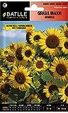 Semillas de Flores - Girasol Waooh amarillo - Batlle