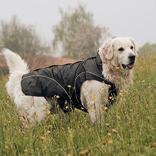 DOGBITE Winterjacke FLEXIBLE SYSTEM Schwarz Mantel für Hunde 50cm