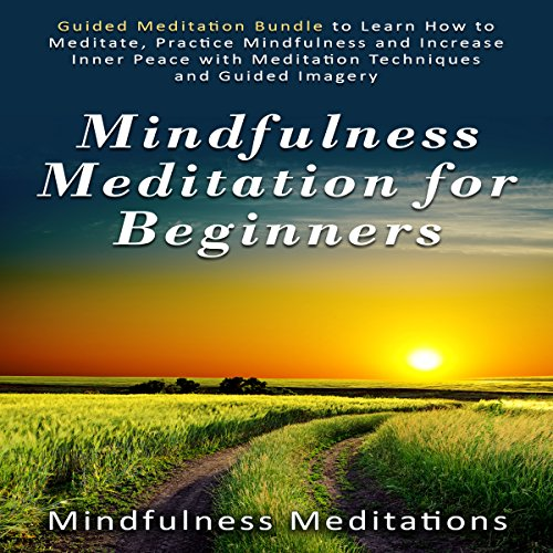 Mindfulness Meditation for Beginners audiobook cover art