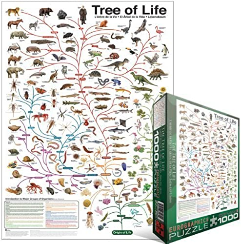 Eurographics the Tree of Life Puzzle (1000 Pieces) by Eurographics