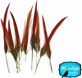 Pheasant Feathers, 10 Golden Pheasant Red Tips Loose Feathers