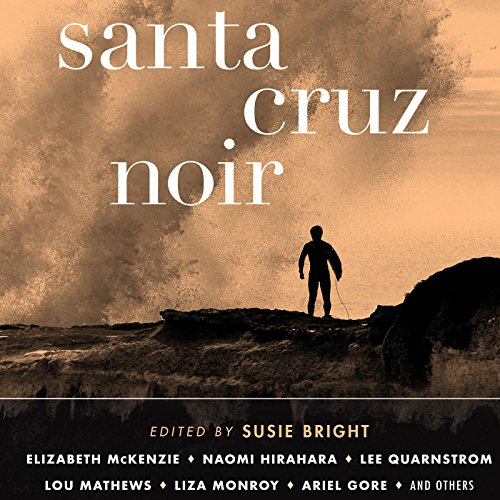 Santa Cruz Noir audiobook cover art
