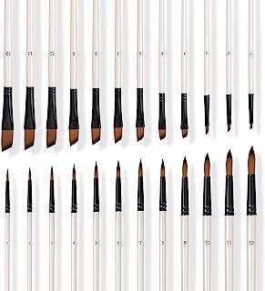 homEdge Cepillos de pintura, 24 piezas de acrílico de nylon