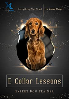 Everything You Need to Know About E Collar Lessons (English Edition)