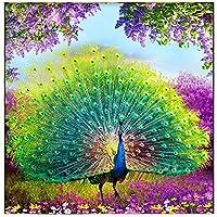 5Dダイヤモンドペインティング 孔雀が画面を開きます。室内装飾用の手工芸品 30x30cm