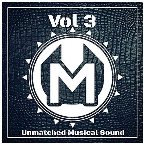 MusicDilleR, Artem Kenzo, Pavel L., Paul Shevchenko, Distributor, The Vector, Head Splitter & Dj Vinil KHV