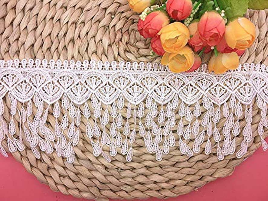 8CM Width Europe Tassel Pattern Inelastic Embroidery Lace Trim,Curtain Tablecloth Slipcover Bridal DIY Clothing/Accessories.(2 Yards in one Package) (White)